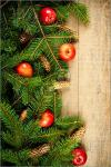 Christmas-Fir-Branches-2457977